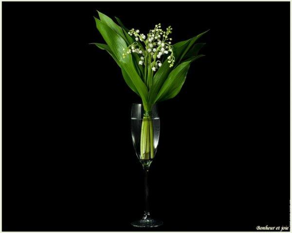 cadeau de scarlett77, merci bcp mon amie,kissssss