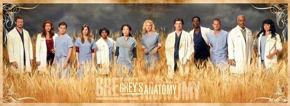 Grey's Anatomy Saison 3