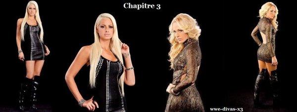 Chapitre 3 ( Nouvelle fic )