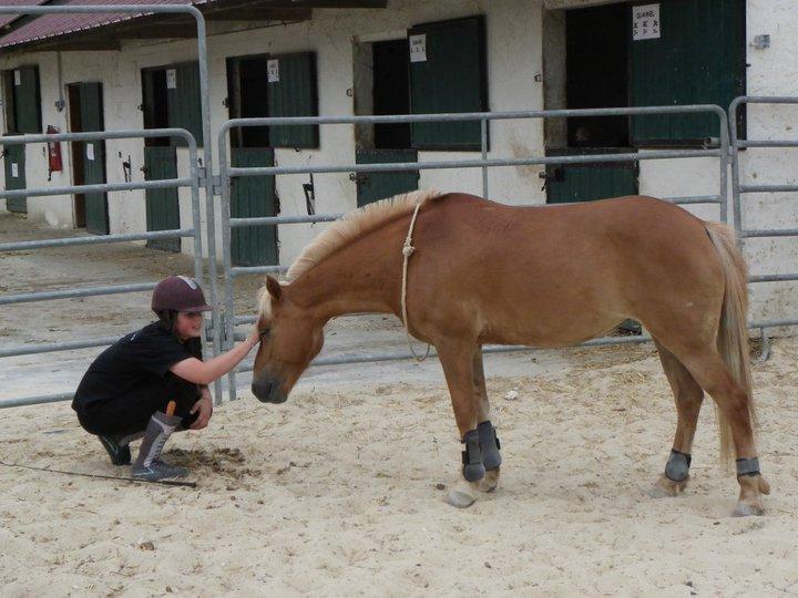 « Le cheval porte son cavalier avec vigueur et rapidité.  Mais c'est le cavalier qui conduit le cheval.  Le talent conduit l'artiste à de hauts sommets avec vigueur et rapidité. Mais c'est l'artiste qui maîtrise son talent. »