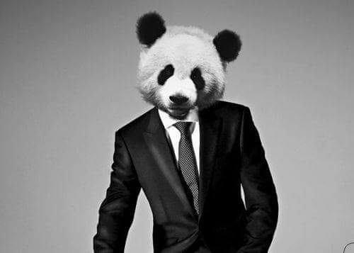 Panda life.