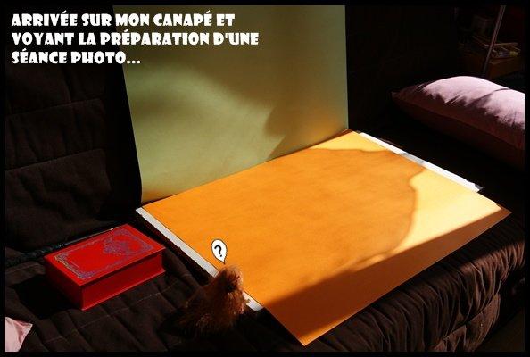 Photostory - Découverte de Clem' par Kiza !