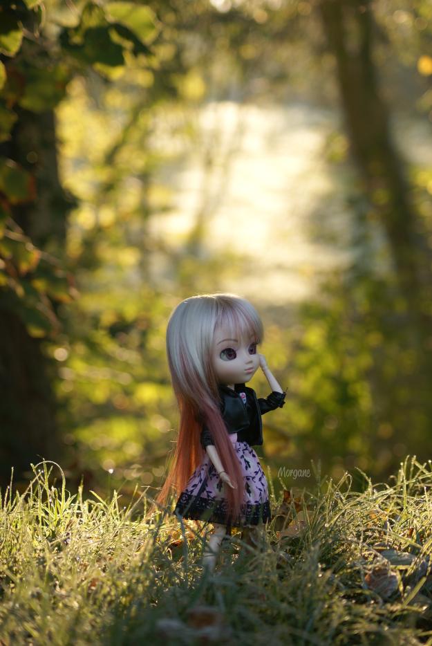 Le givre au parfum de Vanille 2 ~ ♥