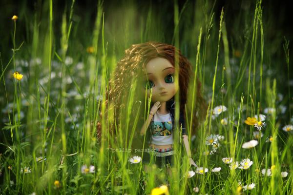 Perdue dans une forêt d'herbe