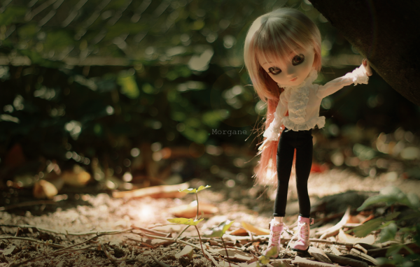 Photoshoot - Vanille