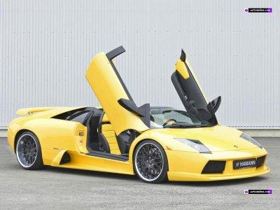 Lamborghini Gallardo Porte Papillon Idee Roues Images