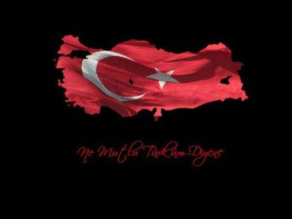 Je suis TURK mais MUSLIM avant tous .