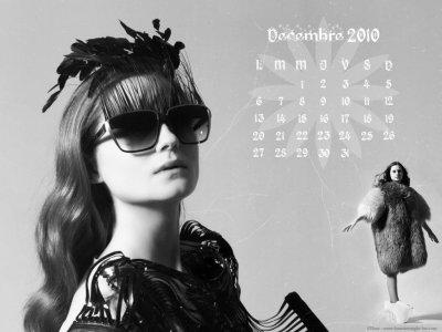 Bienvenue (Decembre 2010)