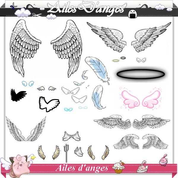 Création Source Montage : Les Ailes d'Anges