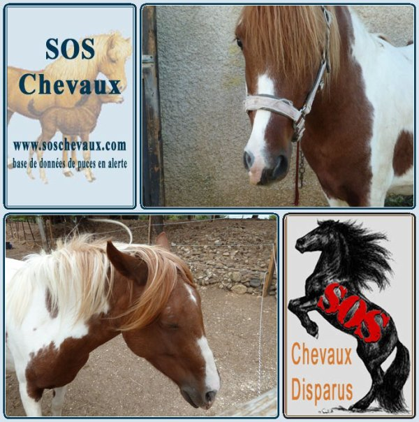 13 560  Cheyenne - en 2015