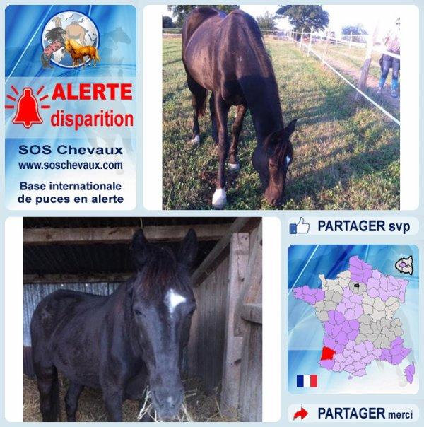 40 270  Lascaux d'Aurville