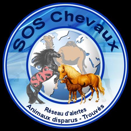 SOS Chevaux disparus/volés