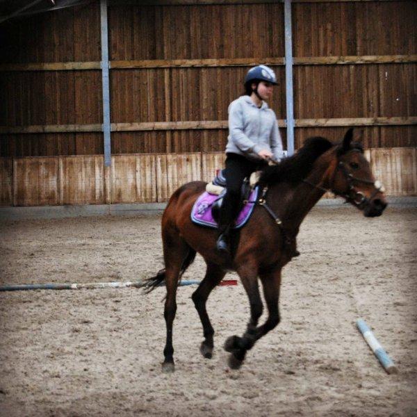 L'equitation plus qu'un sport <3