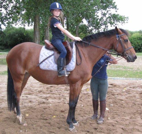 Ma première année d'équitation (à shetland) !!