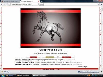 Des associations pour les chevaux maltraité ou autre !!