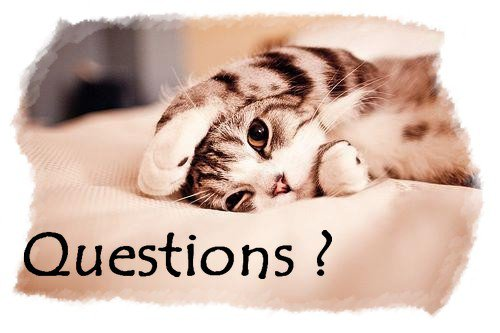 """""""Questions ?!  Reponses ..."""""""
