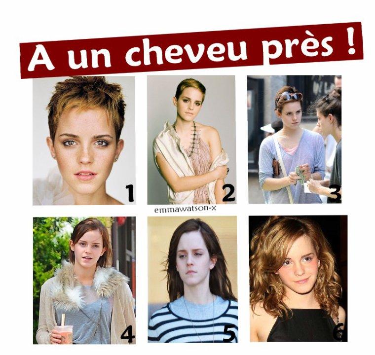 Quelle est ta coupe de cheveux préférée ?