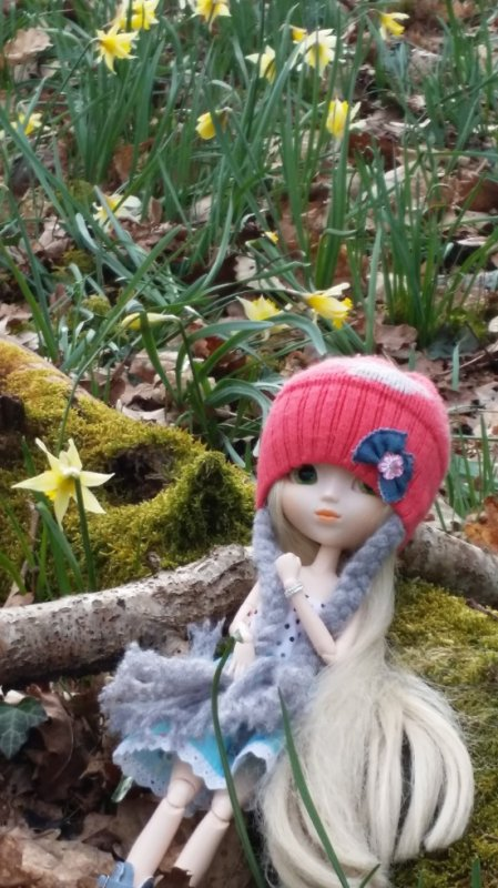 natsumi dans la forêt
