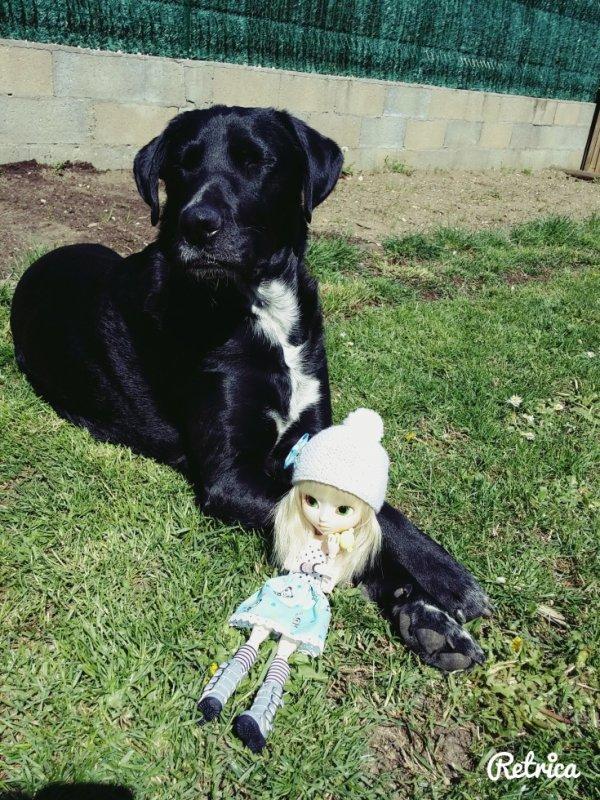 natsu et mon chien (Gadjo)