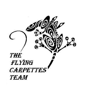 Blog des FLYING CARPETTES
