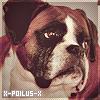 Photo de X-Poilus-X