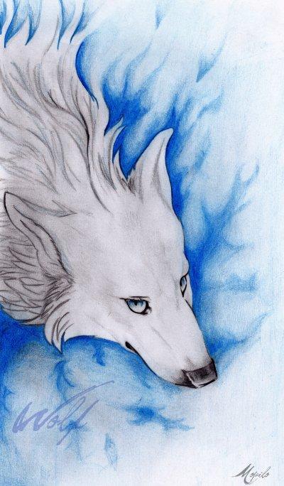 Loup Bleu, une belle galère !!!