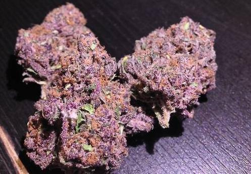purple !!