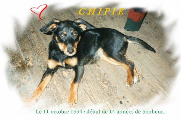 Chipie, il y a 18 ans...