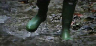 [ Rain ]