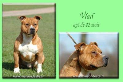 Vlad,mon oncle