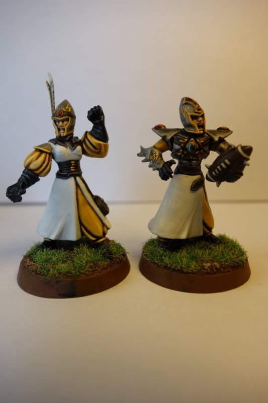 Avancement Blood Bowl Hauts Elfes : Les Tiranoc Thunderbolts !