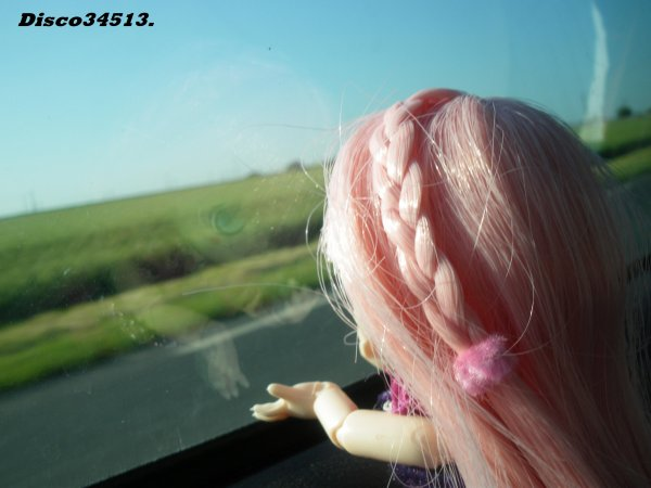 Echangeage de wig : Coup de coeur.(l)