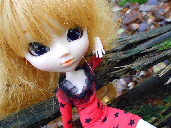 Forêt de chambord - Cueillette de champignon - 03/11/12 - L'automne ♥.