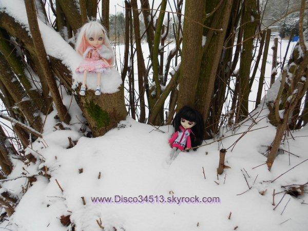 30 cm de neige = Photos ! :D (4 et fin)