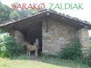 Photo de SarakoZaldiak