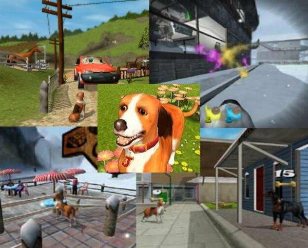 Dog's Life - 2003