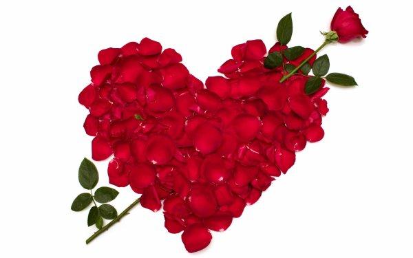 bonne saint Valentin  a ceux qui la prolonge