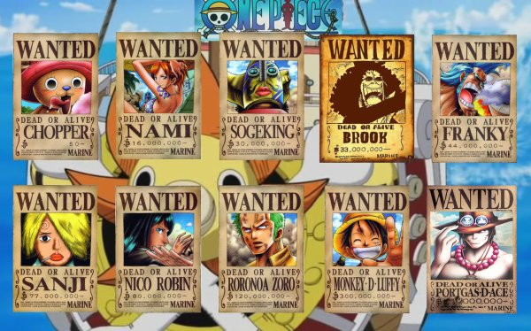 Wanted : Equipage de Luffy