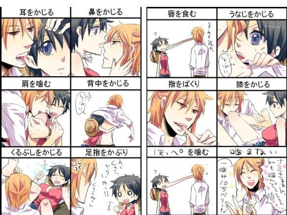 Le LuNa(Luffy x Nami) devient le NaLu(Namizo x Luffyko)