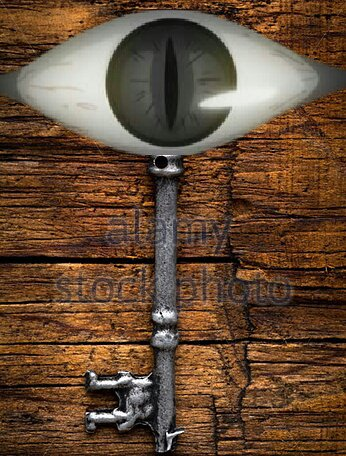 Les Pirates de l'Ange:Chapitre 33:Homonculus vs Pirates!! Vengeons notre camarade!