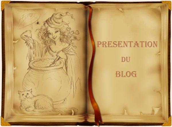 ¤ Présentation du blog ¤