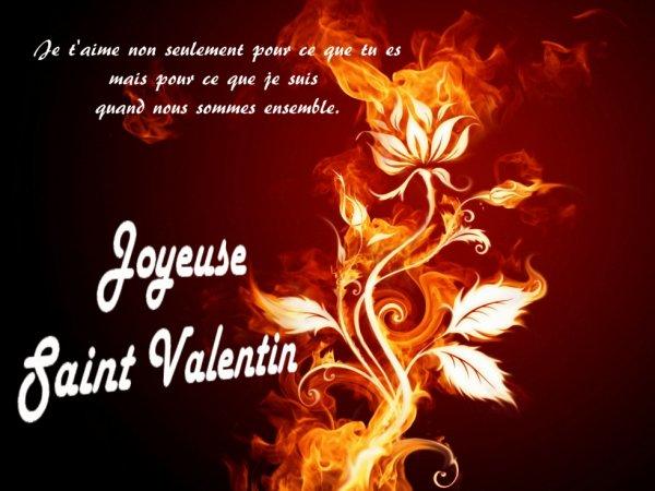 bonne saint valentin a vous