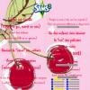 `*•I([ Sims 3 - épisode 5 ])I•*´