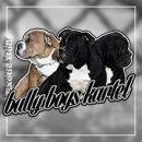 Photo de bullyboyskartel