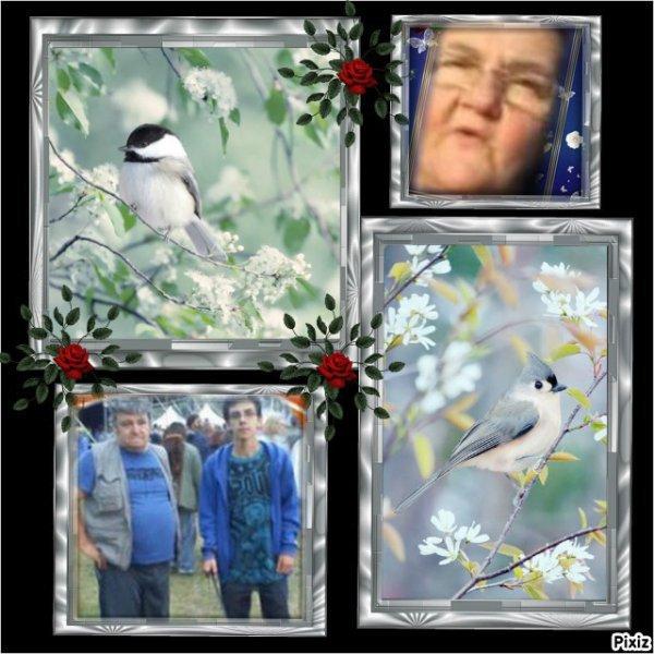 Merci à mes amies petitemamiedu13 et poupoune85653 et credence80100 et blanche628 pour leurs beaux cadeaux