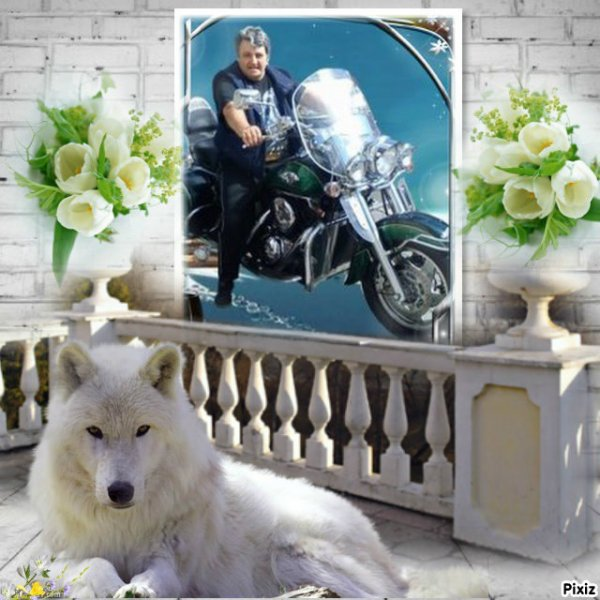 Merci pour ces beaux montages mes ami(e)s capucine55500  & petitemamiedu13 & Blanche628