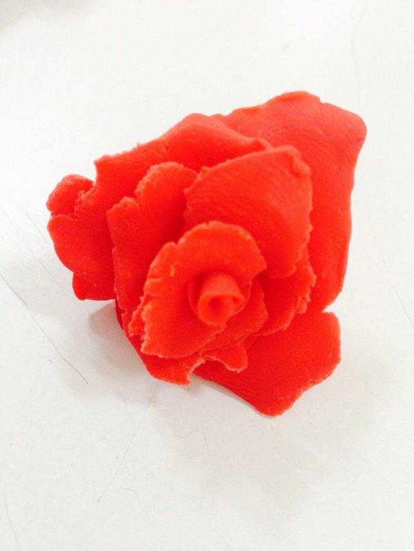 Fleur en pâte a modeler fais par mon prof d'arts plastiques!!