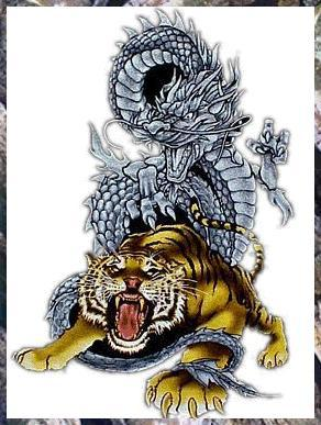 Tatoo dragon tigre tatouage - Tatouage tigre signification ...
