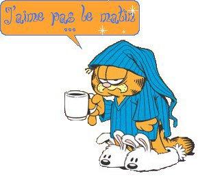 j'aime pô le lundi matin........Garfield non plus