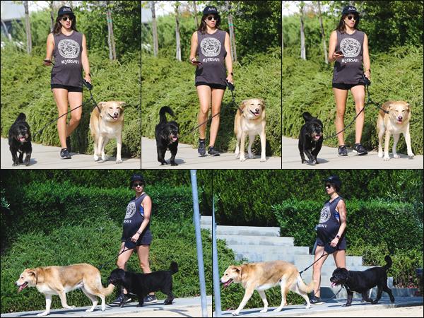 ''• '16/08/18:'' Troian Bellisario a été aperçue alors qu'elle se promenait avec ses chiens dans Los Angeles CA. Il n'y a aucuns doutes, sur le fait que l'actrice est bel et bien enceinte ! Je lui accorde un petit top pour cette tenue, quel est votre avis ?!